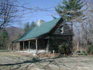 mini-Log Cabin -chestnut 16' hgt -  .JPG (323946 bytes)